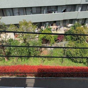 洋室5帖の窓からの眺望2。下は交通量の少ない道路です。