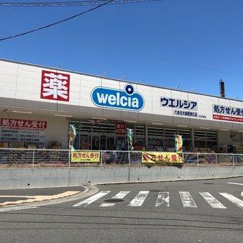 【駅周辺】ドラッグストア!