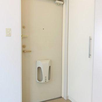 玄関も十分なスペース(※写真は2階反転間取り別部屋のものです)