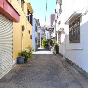 【周辺環境】先ほどの場所から後ろを向くと、お部屋へつづく路地です。