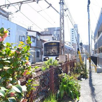 【周辺環境】そばを通る路面電車。今ではほとんどない風景に胸が高鳴ります。