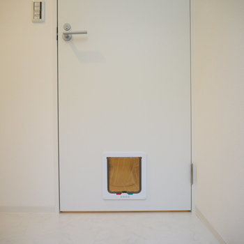 【2階】ねこちゃん用のドアも!※写真は同間取り別部屋のものです