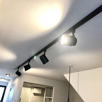 照明は角度を変えられるスポットライトでした。