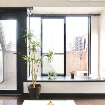 出窓にはグリーンを並べてあげましょ。(※写真は6階の同間取り別部屋、モデルルームのものです)