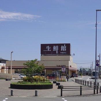 ロータリーから見える位置に生鮮スーパーが!意外と便利に暮らせそう。