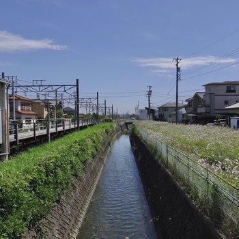 駅の構内に小川と緑がありました。駅からも郊外の良さを感じられますよ◎