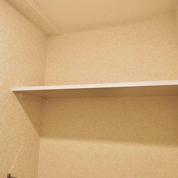 上部にはラックが。ペーパーや、洗剤などさっと取れる位置に収納できますね。
