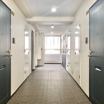 共用部の廊下はキレイに掃除してありますよ。