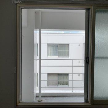 洋室からの眺め。共用部に面しています。
