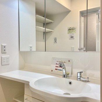 大きな鏡の裏は収納になっています。お風呂グッズや朝使うものも全部ここに!※写真は3階の反転間取り別部屋のものです