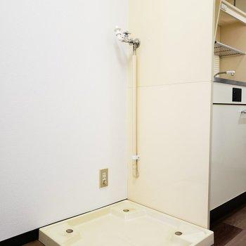 洗濯機置場はキッチンの横にあります(※写真は5階の同間取り別部屋のものです)