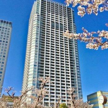 Brilliaタワー東京