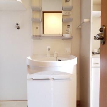 シャワーヘッド付きの使いやすそうな洗面台です(※写真は5階反転間取り別部屋のものです)