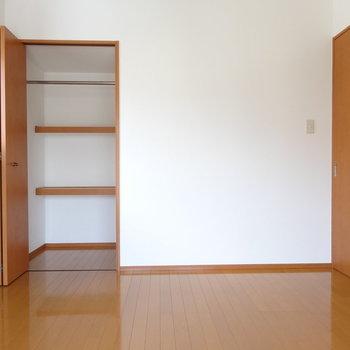 クローゼットは奥行きあります。棚に小物などを置いて。(※写真は7階の同間取り別部屋のものです)