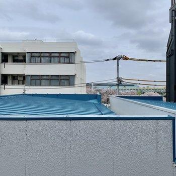 ベッドスペースからの眺望。建物の奥に桜が見えます。