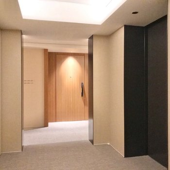 共用廊下はカーペット敷きで、まるでホテルのよう。