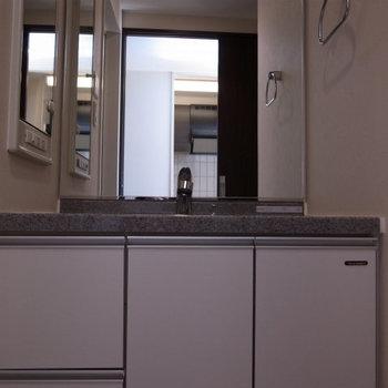 独立洗面台も大きくてうれしい(※写真は9階の反転間取り別部屋のものです)