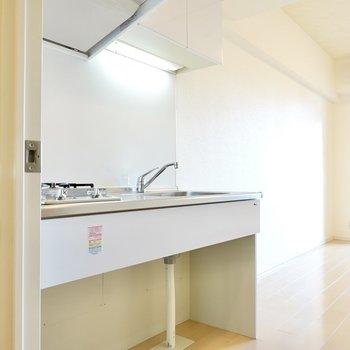 カッコいい上に暮らしやすい。しかも、ワンチャンと一緒に暮らせるデザイナーズ!(※写真は11階の同間取り別部屋のもの)