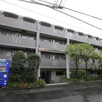 スカイコート新宿落合第6