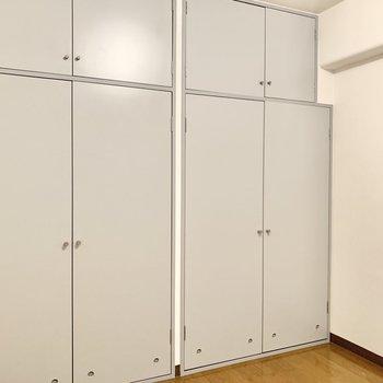 【洋室5帖】大容量の収納付きです。