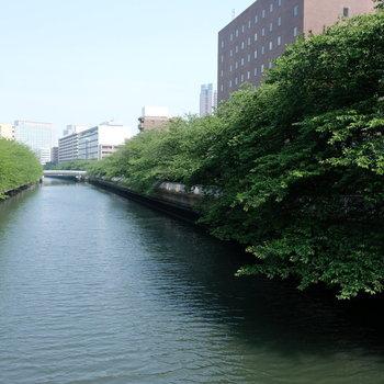 駅からの道中、川を渡るのも粋ですよね〜!