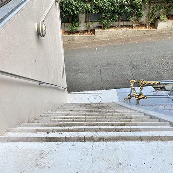 少し急な階段。横幅はあるので家具の搬入は大丈夫そう。