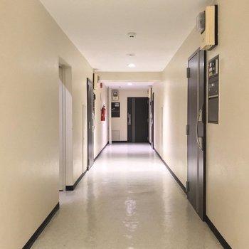 共用廊下は室内で、綺麗に管理されている印象でした!