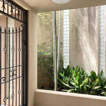 エントランスにはガラスブロックが素敵な坪庭が。