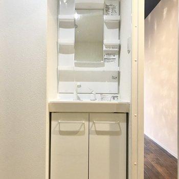 洗面台はシンプル!※写真は同間取り別部屋です