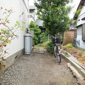 入口です。奥には紫陽花が咲いています。