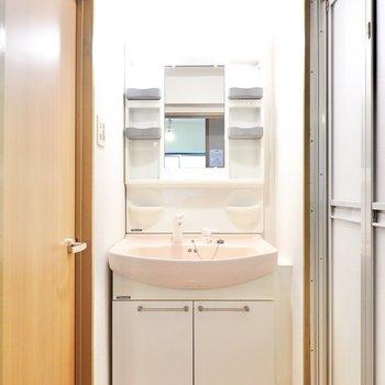 脱衣所に入って正面に洗面台。