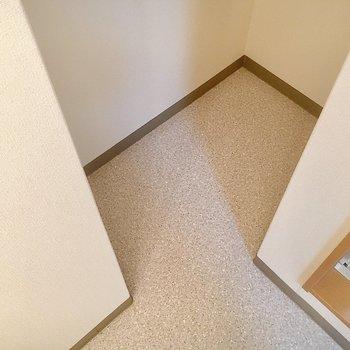 奥にはちょっとしたスペースが。ぴったりの棚を見つけたい!