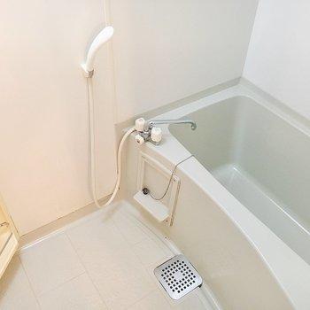 ゆったり浸かれそうな浴槽です。