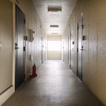 【共有部】廊下は広めです。