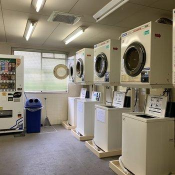 洗濯機は共用部にあります。