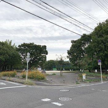 お隣にはベランダから見えていた大きな公園。
