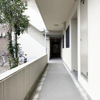 玄関前には共用廊下が伸びます。