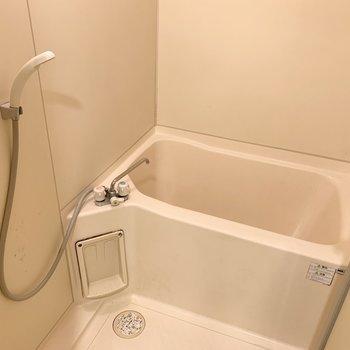そのお向かいには浴室。シンプルで掃除のしやすそうなお風呂です。