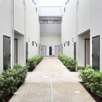 共用部】建物内には緑のあるアプローチ。