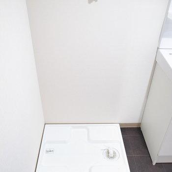 洗濯パンはとなり同士。床はすべすべしてて、水を弾いてくれそうな材質です。