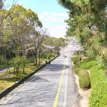 【周辺環境】駅を出てまっすぐ行けば緑地公園!歩いて7分ほど。