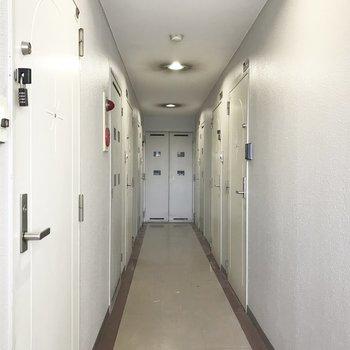 共用部】廊下は幅狭いかな。