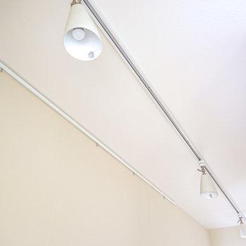 廊下の照明はライティングレール。ギャラリーのような雰囲気が楽しめそう。(※写真は2階の同間取り別部屋のものです)