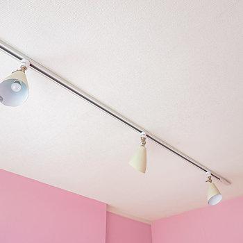 照明はダクトレールに装着されたスポットライト。通電したら雰囲気良く照らしてくれそう。