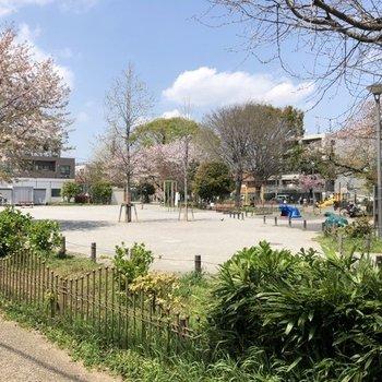 駅からの途中には遊具もある大きめの公園。飲み物片手に、チルアウトできちゃうな〜。