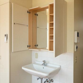 洗面台。使わないときは扉を閉めておくと生活感が出にくいですね。