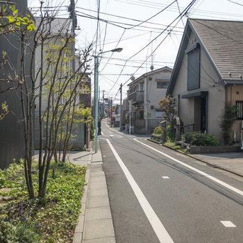 周辺は閑静な住宅街です。この道を直進します。