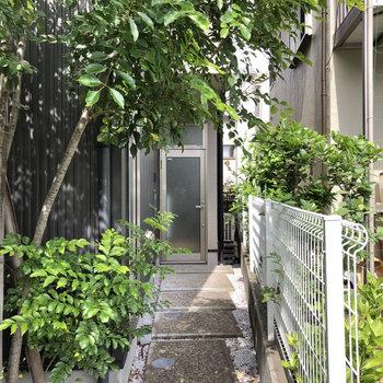 お部屋は緑の小道を抜けた先にあります。