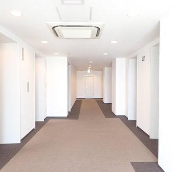 共用部】ホテルのような廊下です。床は絨毯でした。