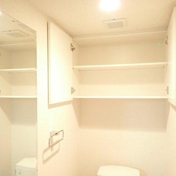 上にはペーパー置き場も。鏡がけっこう大きめ。